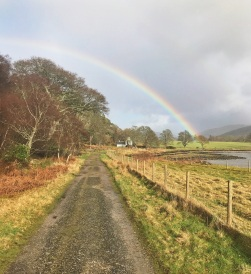A rainbow captured on the last stretch of a run back to the cottage.